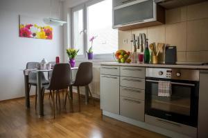 Kuchyňa alebo kuchynka v ubytovaní SGL apartment Liptovska