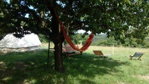 Jardin de l'établissement Les Soleillas pour votre zen'ittude