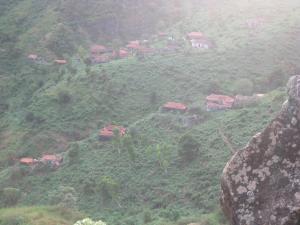 A bird's-eye view of ponta gato residence