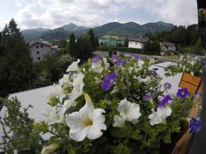 Ein Blick auf den Pool von der Unterkunft Pension Seeblick oder aus der Nähe