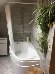 Salle de bains dans l'établissement Le Chanois