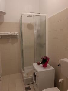 A bathroom at Apartments Roza