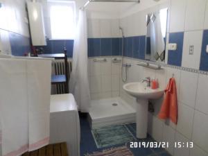 A bathroom at Rita apartman