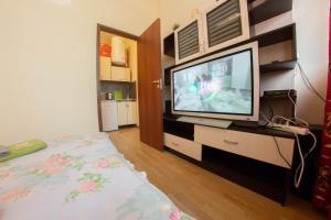 Телевизор и/или развлекательный центр в Апартаменты у Александринского Театра