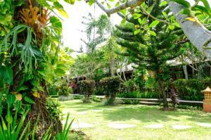 A garden outside RedDoorz Plus @ Raya Senggigi Lombok