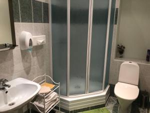 A bathroom at Rēzijas