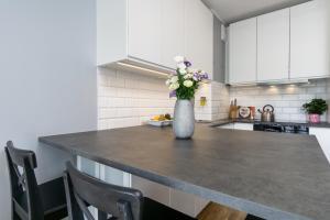 Kuchnia lub aneks kuchenny w obiekcie Elite Apartments City Center Suites