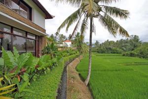 A garden outside Ubud Green Resort Villas