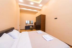 Cama ou camas em um quarto em Spacious Apartment in the Heart of Baku