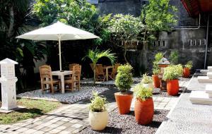 A garden outside Warung Coco Hostel