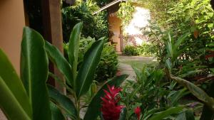 A garden outside Pousada Magia Verde