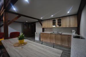 Kuchyň nebo kuchyňský kout v ubytování Areál Přístav