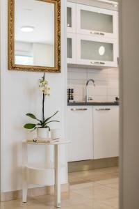 A kitchen or kitchenette at Adriatic Queen Villa