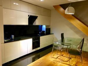 A kitchen or kitchenette at Apartament Biznesowy Willa Park