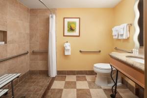 A bathroom at Hampton Inn Key Largo