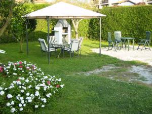A garden outside Pensión Bella Vista