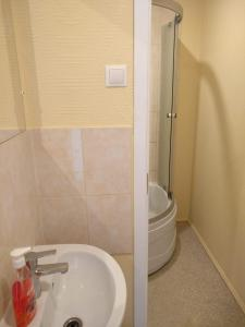 A bathroom at Viesnīca Piedruja