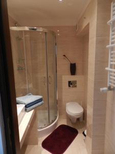 Łazienka w obiekcie Gola Studio Apartment