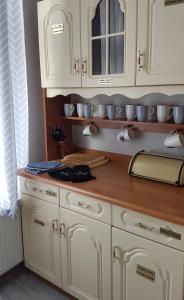 A kitchen or kitchenette at Czarna Owca- Pokoje Gościnne