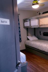 A bunk bed or bunk beds in a room at Shon's - Bike - Ski - Stay