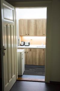 Kuchyň nebo kuchyňský kout v ubytování Designer Loft at Stodolní street