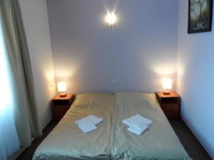 Łóżko lub łóżka w pokoju w obiekcie Hotelik Gold