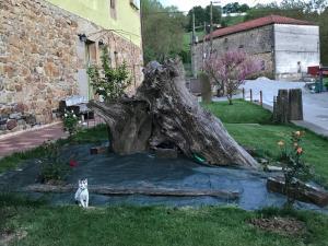 Jardín al aire libre en Agroturismo Gure Naia
