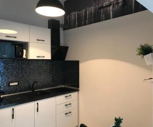 O bucătărie sau chicinetă la Tomis 105