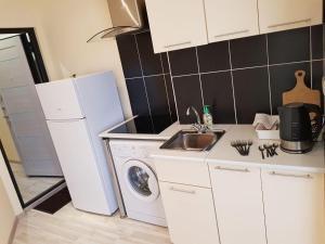Кухня или мини-кухня в Apartment Crocus