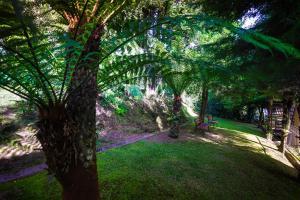 A garden outside Cammino Della Serra