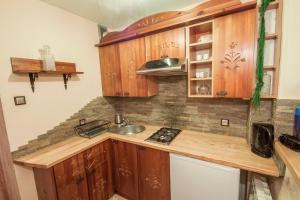 Kuchnia lub aneks kuchenny w obiekcie Apartament Zborowskiego