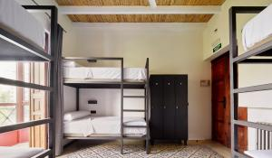 A bunk bed or bunk beds in a room at The Boc Palma Hostel - Albergue Juvenil