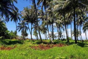 Zahrada ubytování Ira Bungalows Pulau Banyak