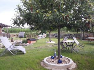 Ein Garten an der Unterkunft Landhaus Dampf