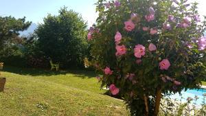 Сад в Le Mas de Chartreuse