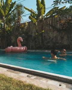 The swimming pool at or near Asung Guesthouse