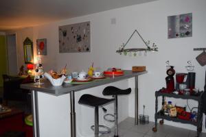 A kitchen or kitchenette at Gite le GINKGO 50 M2
