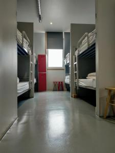A bunk bed or bunk beds in a room at Acolá Hostel