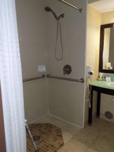 A bathroom at Best Western Plus Portage Hotel and Suites