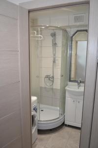 A bathroom at Korolevskaya Gora Apartment