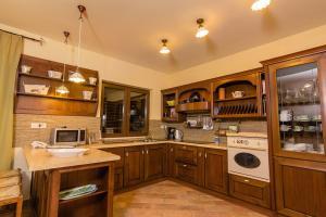 Cuisine ou kitchenette dans l'établissement Astra Villas