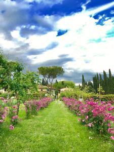 A garden outside La Fattoressa