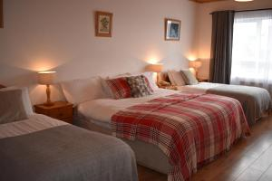 A bed or beds in a room at O'Connor's Guesthouse