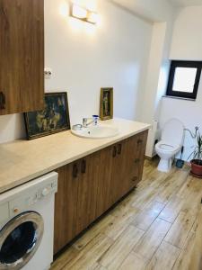 A bathroom at Agro-Pensiunea Morarita