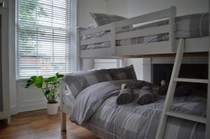 A bunk bed or bunk beds in a room at Apartment 2 Hamilton Square