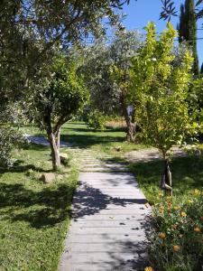 A garden outside Casa da Paleta