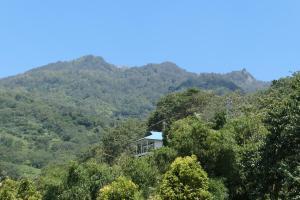 Een algemene foto van de bergen of uitzicht op de bergen vanuit het hostel