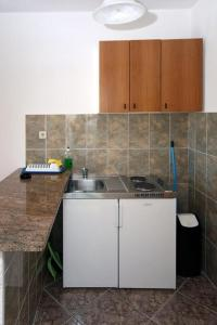 A kitchen or kitchenette at Apartments with a swimming pool Soline, Dubrovnik - 4762