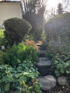 Een tuin van Spa Cottage Bed And Breakfast