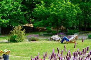 Um jardim no exterior de Solar da Castanha - Forest House